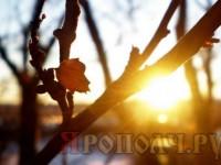 солнце_апрель