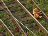 teddy-bear-on-railway