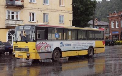 Пригородные автобусы. Гороховец
