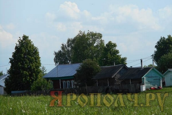 Деревня Большевысоково Вязниковского района