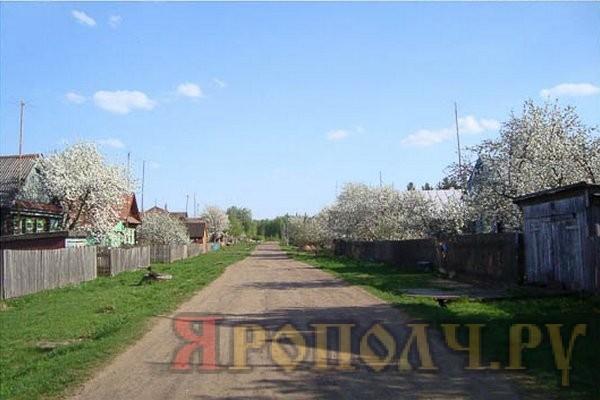 Деревня Буторлино Вязниковского района