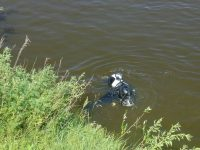 Тело утонувшего мальчика обнаружили в 5-ти километрах вниз по течению реки