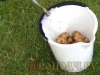 Как почистить килограмм картофеля за одну минуту