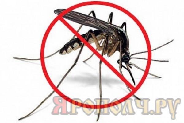 borba-s-komarami