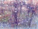 Погода на субботу, 8 апреля: облачно, местами дожди
