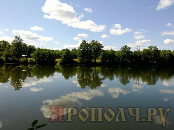 Мстерка,Барское Татарово,Мстера,лето,август, 2017 год