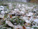 Погода на пятницу, 29 сентября: ожидается первый снег, правда, с дождем