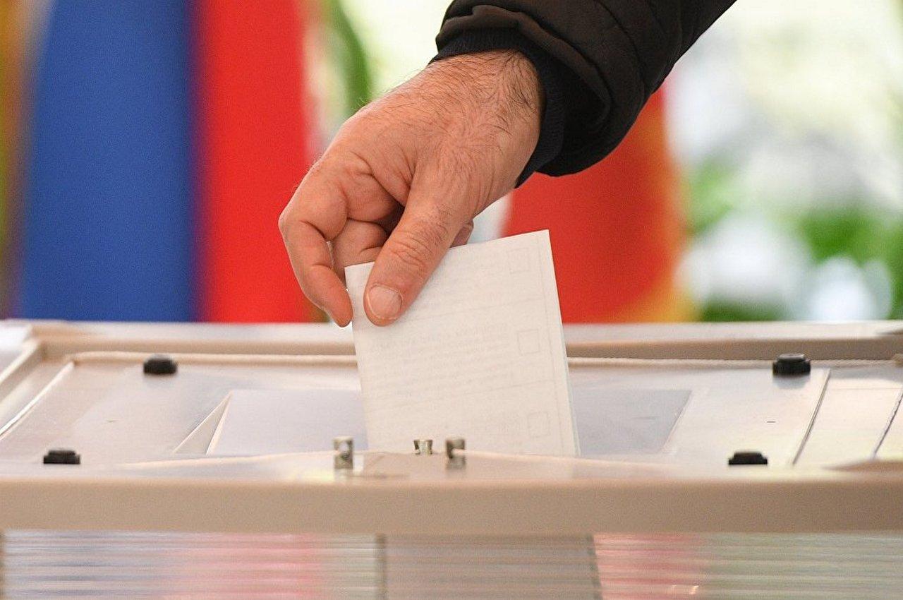 Выборы в цифрах. Максимальная явка в Гороховецком районе