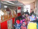 Дети побывали в гостях у никологорских пожарных