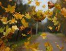 Погода на понедельник, 16 октября: из-за сильного ветра в регионе объявлен желтый уровень опасности