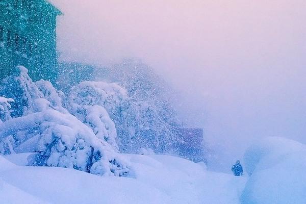 метель,сильный снег,снегопад,