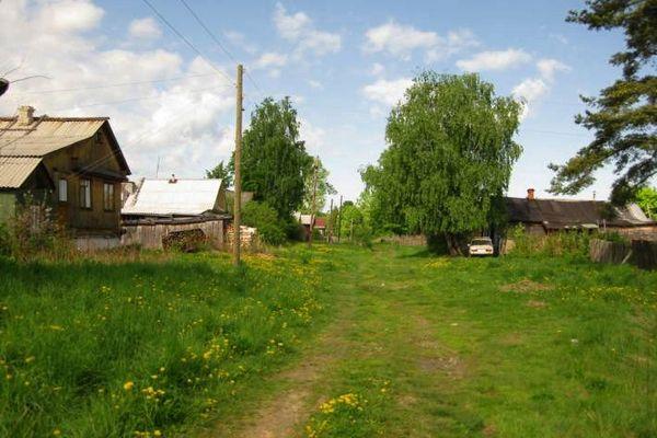 деревня Налескино,Вязниковский район,