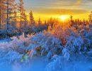 зима,солнцестояние,