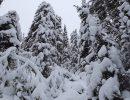 19 декабря – Никола Зимний. Что можно и что нельзя делать?
