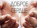 доброта,доброе сердце,добрые руки,