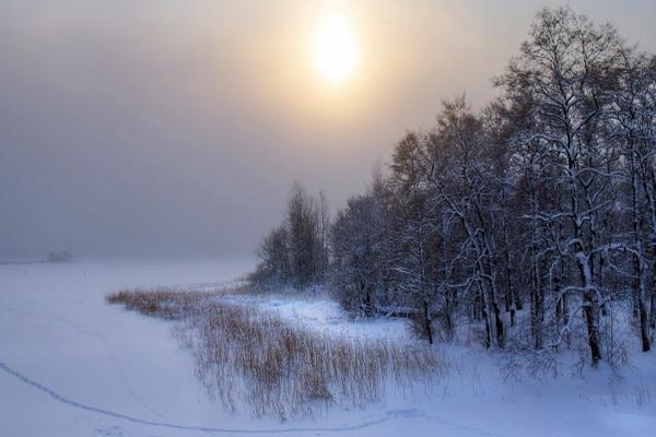 зима.февраль,