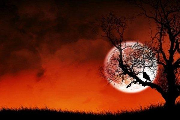 Вальпургиева ночь,шабаш,