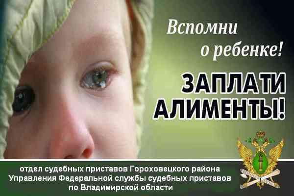Приставы призвали граждан выплатить долги по алиментам в честь Дня защиты детей
