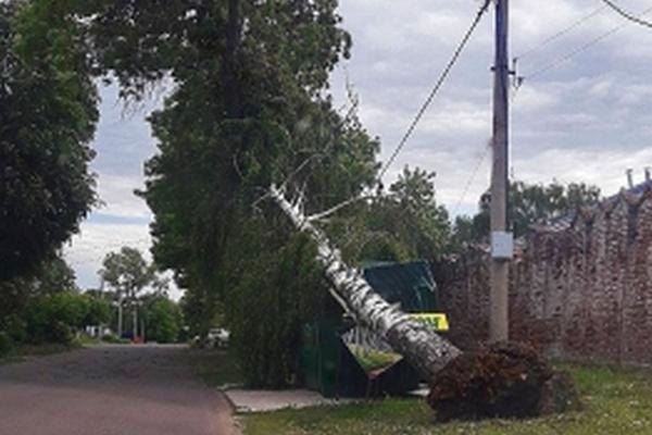 Во время прошедшего урагана в регионе пострадали двое детей