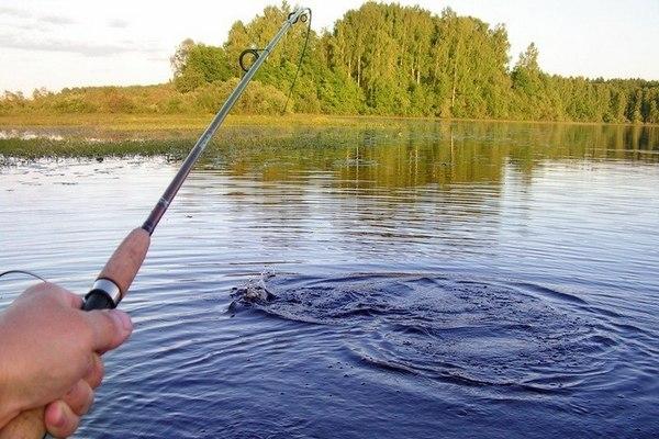 Любительская рыбалка в стране может стать платной