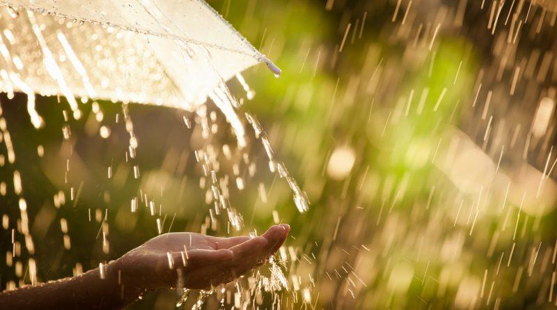 дождливо,тепло,дождь,лето,под зонтом,капли в ладонь,