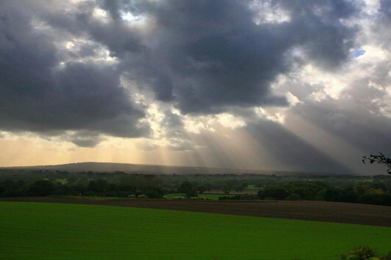 Погода на среду, 18 июля: жара немного отступит, дождь и местами гроза