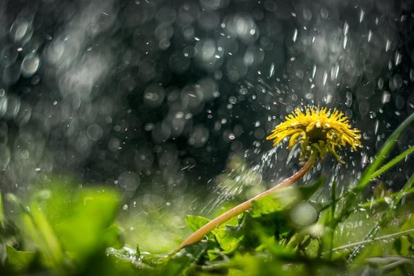 Погода на вторник, 10 июля: станет теплее, но без дождей не обойдется