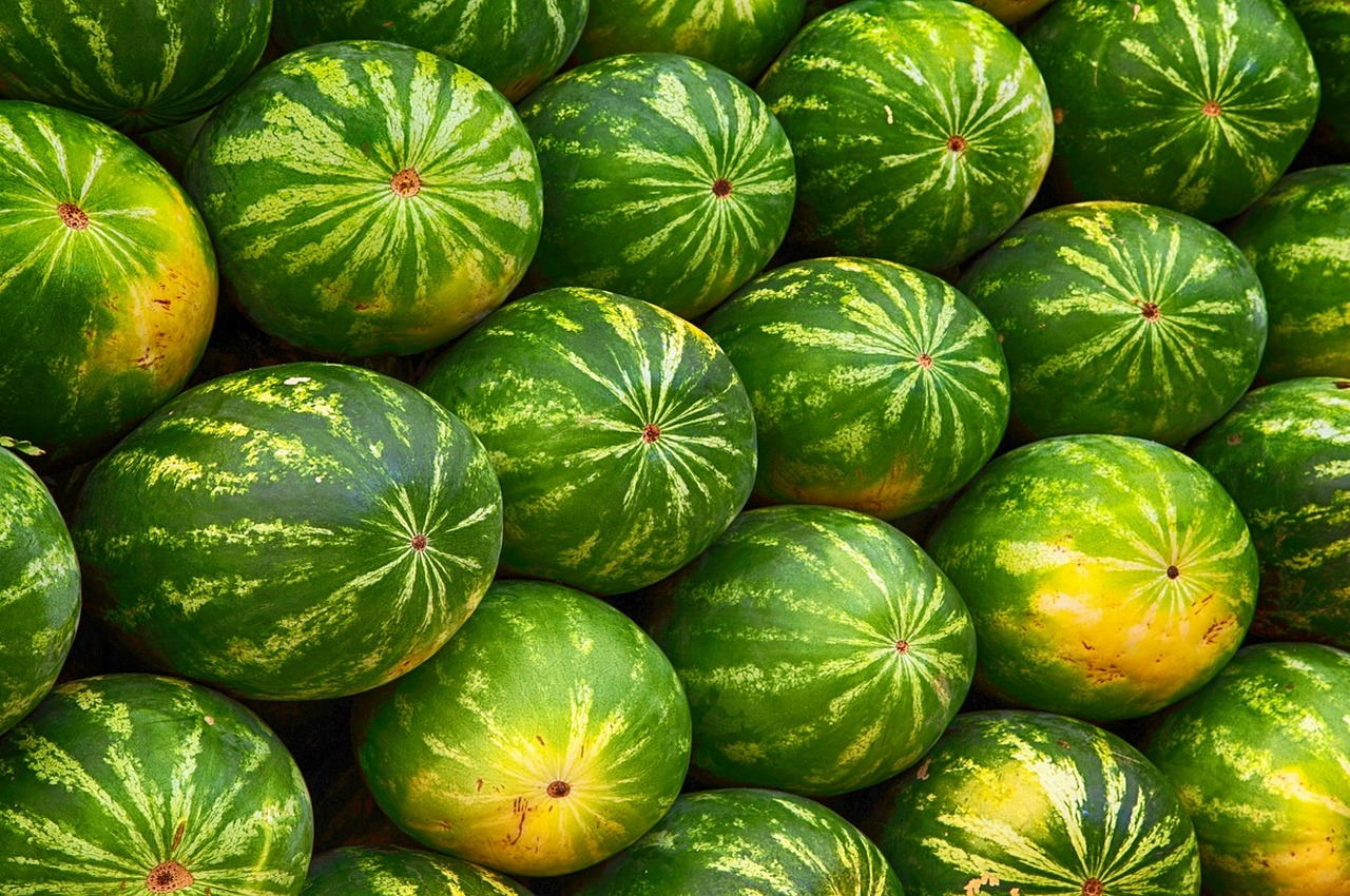 Прокуроры обнаружили 5 тонн арбузов неизвестного происхождения