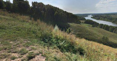лето,Клязьма,август,Гороховец,Лысая гора,
