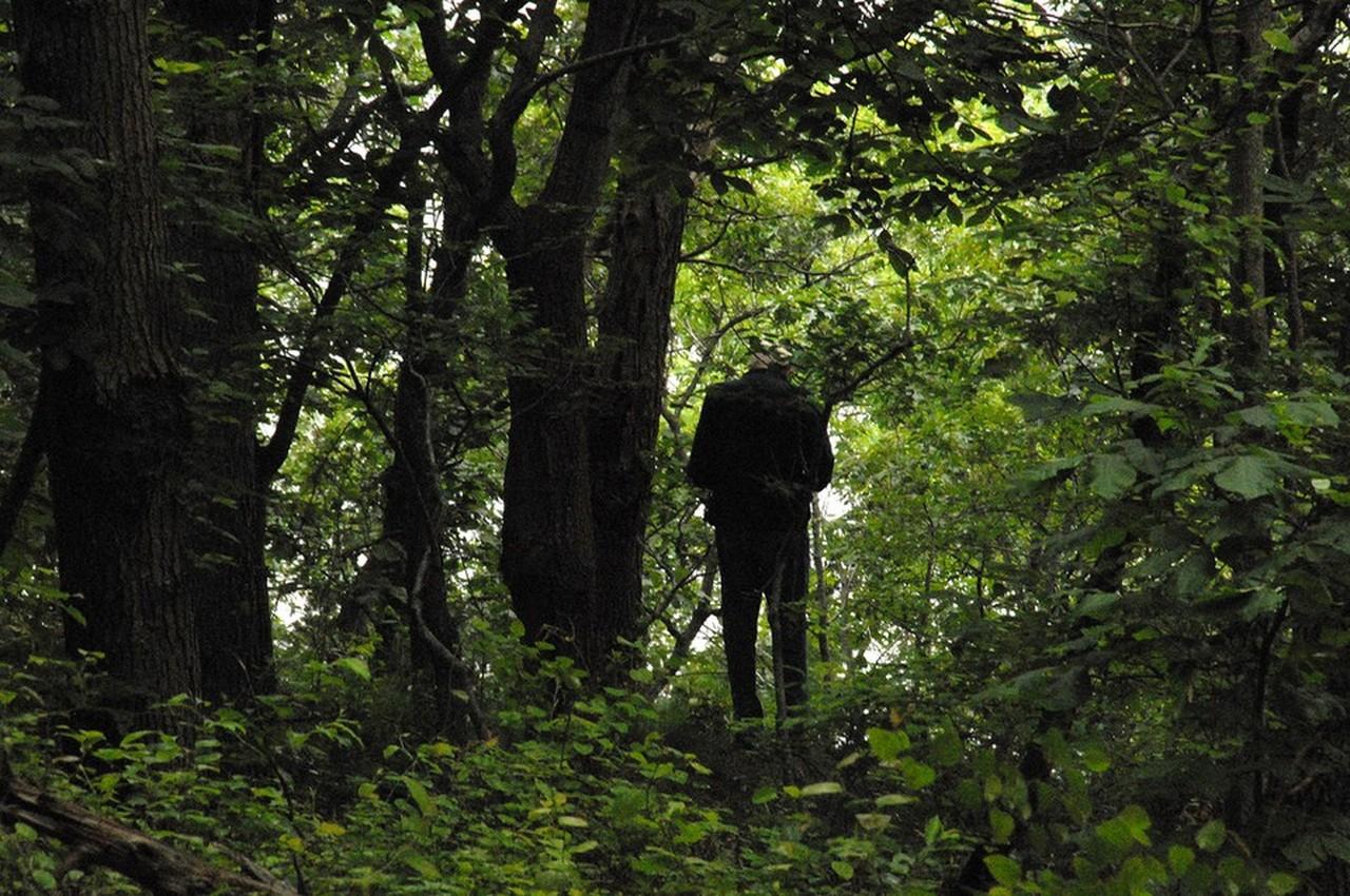 Отца, который изнасиловал свою 15-летнюю дочь, полицейские задержали в лесу