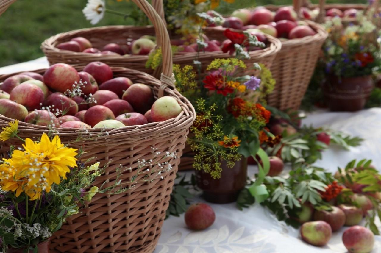 19 августа — Яблочный спас (Преображение Господне). Что можно и что нельзя делать в этот день?