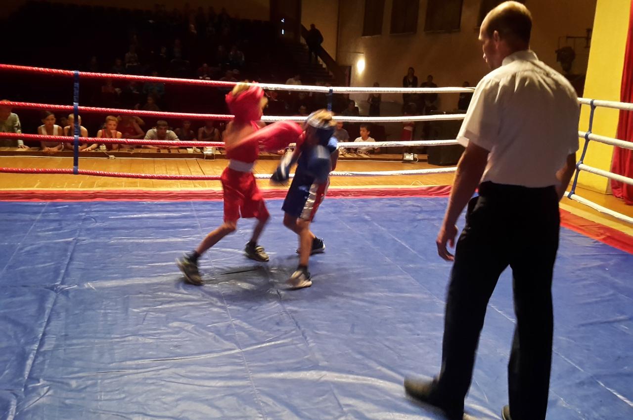 В Вязниках на ринг вышли дети