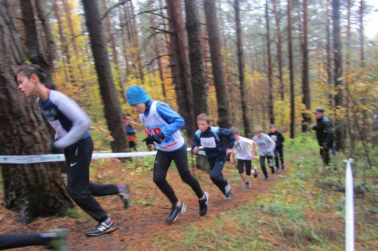 Вязниковцы приняли участие в чемпионате и первенстве ЦФО и Владимирской области по горному бегу