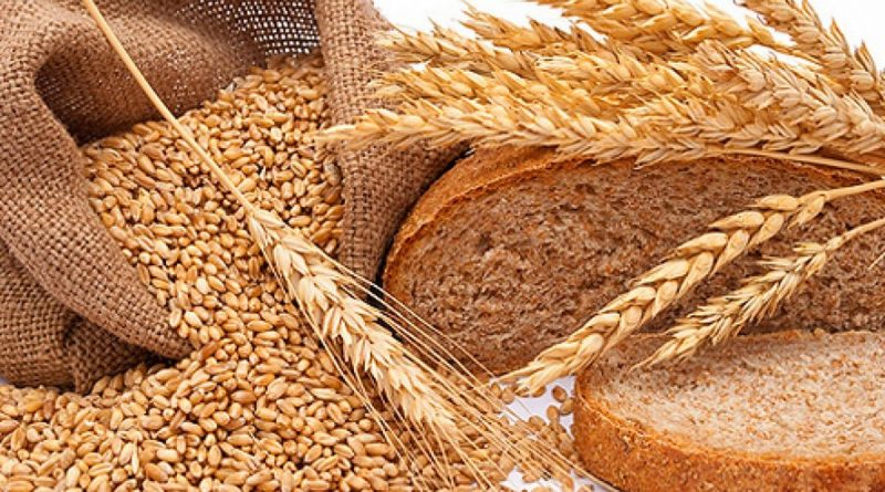 Кондрат да Ипат,зерновые,хлеб,,праздник плодородия,