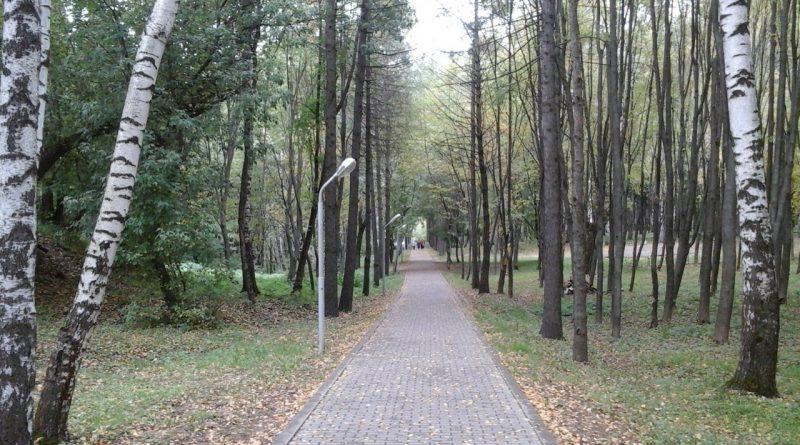 вязники,парк фатьяновский