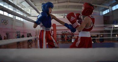 бокс,межрегиональный турнир по боксу,Вязники,