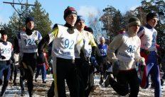 Вязниковские лыжники приняли участие в соревнованиях по кроссу