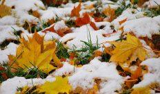 1 ноября — народный праздник Иванов день (Проводы осени). Традиции и приметы