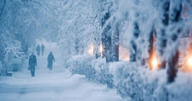 снег идёт,зима,парк,