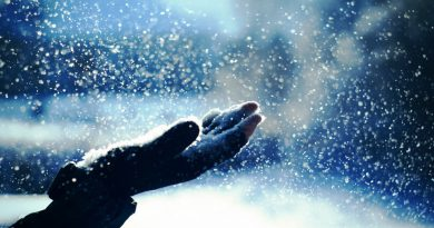 снег,зима,снег падает на руку,