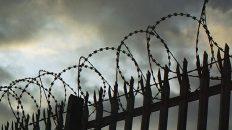 Владимирская область попала в список регионов, где больше всего пыток и издевательств в тюрьмах