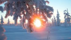 22 декабря — народный праздник Анна Зимняя. Традиции и приметы