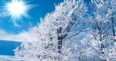 день зимнего солнцестояния,