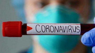 Photo of Количество заболевших коронавирусом во Владимирской области перевалило за 700