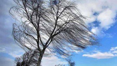 Photo of В регионе ожидается сильный ветер