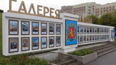 Photo of На областной «Галерее Славы» появились новые герои