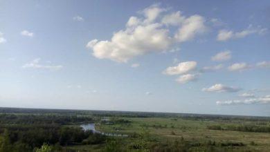 Photo of Погода на вторник, 30 июня: солнечно и без осадков