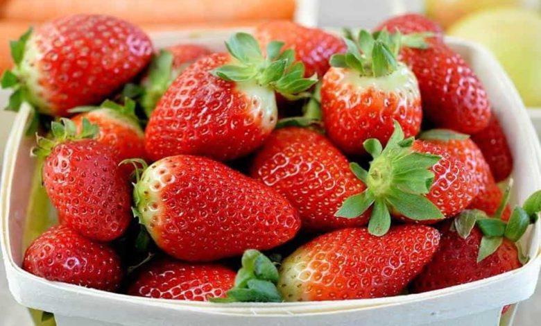 клубника,сезон клубники,ягоды клубники,