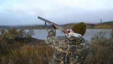 Photo of Открылся сезон охоты на болотно-луговую пернатую дичь