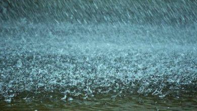 Photo of МЧС предупредило о надвигающемся на регион сильном дожде